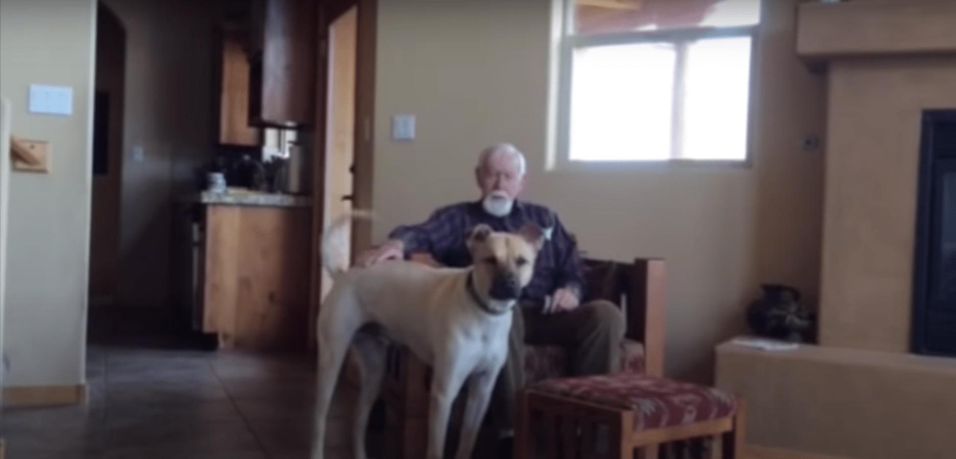 Grandma With Alzheimers Has Sweetest Reaction To Dog