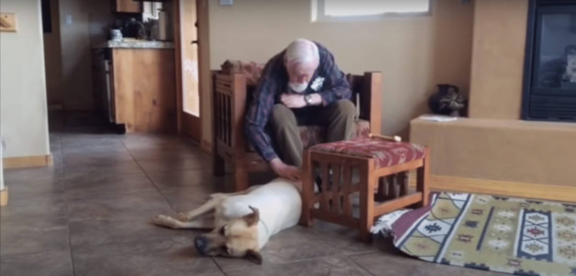 Grandma With Dementia Reunites With Dog Who Waits At Her